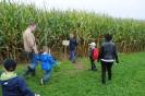 Kinder-Väter-Frühstück im Maislabyrinth